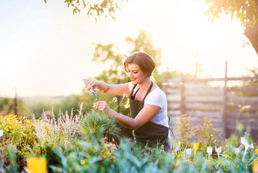 Wiosenne prace w ogrodzie - niezbędnik ogrodnika